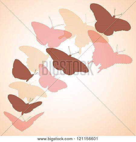 flock of soaring butterflies