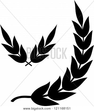 Laurel tree branches - Vector illustration isolated on white.