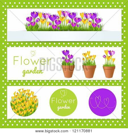 Set Of Vector Banners With Garden Flowers In Pots.for Flower Shop. Stock Vector Illustration.