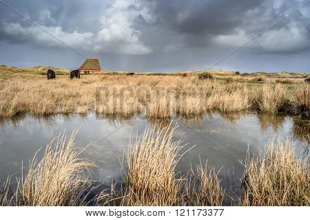 Traditional Sheep Barn In A Nature Reserve At Cloudy Storm Day