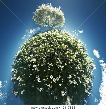 blossoming tree on small planet