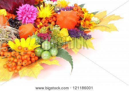 Greeting card autumn