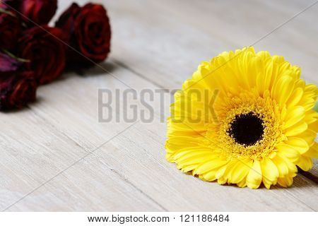 Yellow gerber and dried roses on the wooden table