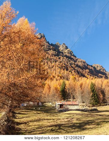 Tiny chalet in the italian Alps with a colourful panorama