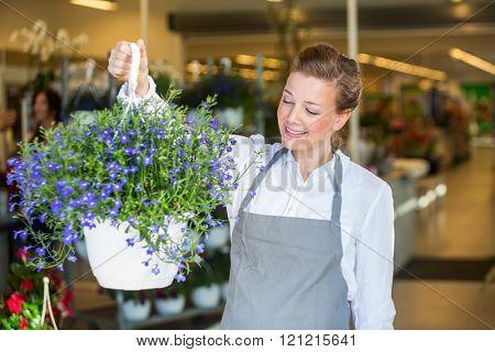 Smiling Florist Holding Purple Flower Plant In Shop