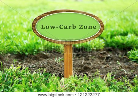 Low-Carb Zone text on wooden signboard over grass, outdoors