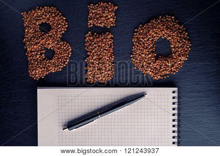 The Inscription Bio