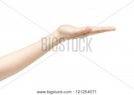 empty young female hand to hold something straight