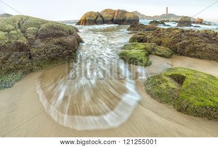 Flowers side waves Ke Ga lighthouse rocks to shore with  waves on bat shaped white flowers beside mossy rocks, a lighthouse in distance steadily on island all day fresh welcome cool