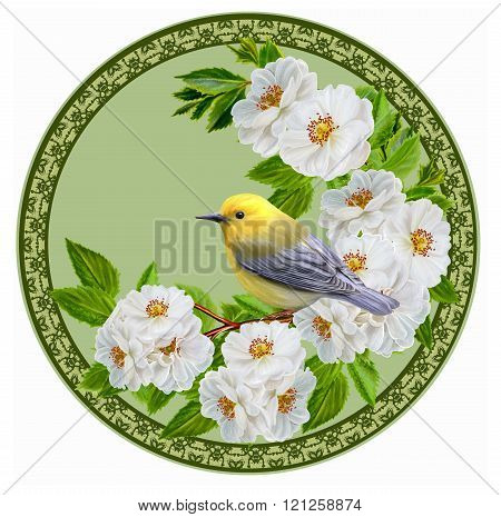 Yellow Small Bird On Branch Blooming White Roses In The Circle. Round Form. Painting.
