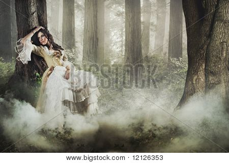 Fine Art Foto einer wunderschönen Dame in eine geheimnisvolle nebligen Wald