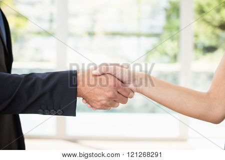Real-estate agent shaking hands with client after the deal