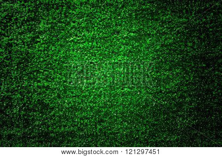 Artificial grass wall. Artificial turf. Thin green plastic.