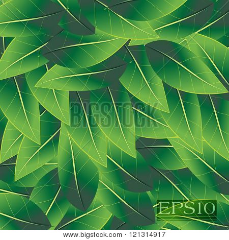 overlapping scattered green leaves ecology nature abstract design
