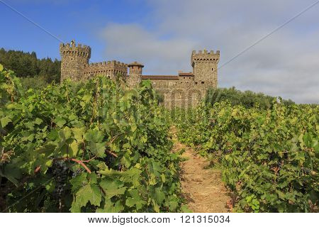 Napa Valley Vineyard And Castle