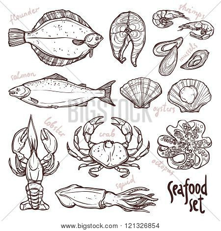 Sketch seafood collection, hand drawn illustration with lobster, squid, salmon, flounder, crab, octopus, mussels, oysters and shrimps on white background