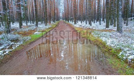Muddy path with puddle of water in snowy forest. Early spring in Bohemian forest. End of winter in Czech Republic, Europe.