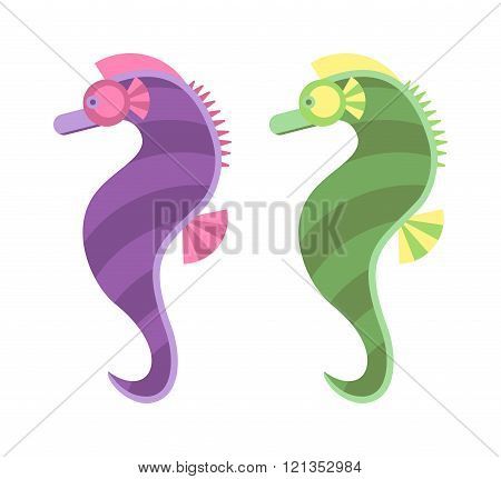Sea horse vector illustration.