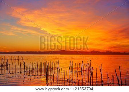 La Albufera lake sunset in El Saler of Valencia at Spain