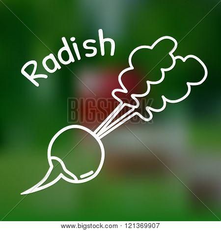 Thin Line Radish Icon