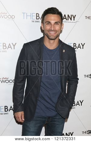 LOS ANGELES - MAR 10:  Erik Fellows at the 5th Annual LANY Entertainment Mixer at the Saint Felix on March 10, 2016 in Los Angeles, CA