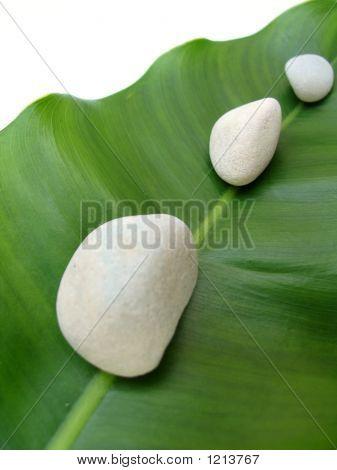 Natural Spa Elements - Pebbles On Leaf