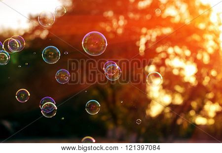 Soap Bubble In The Last Sunshine Of The Day.summer Bokeh