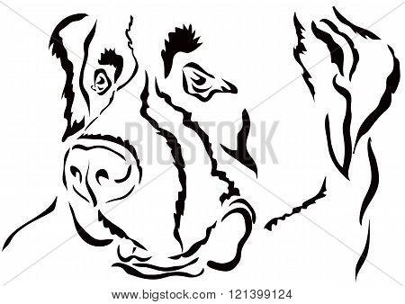 St. Bernard - a very strong large dog