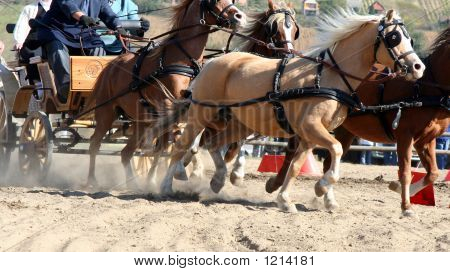 team of horses are splashing dirt on a