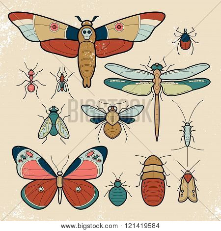 Insects butterfly, moth, dragonfly, bee, fly, moths, cockroaches, bedbugs, mites, ants, mosquitoes, silverfish. Set of colorful vector insects. Collection of insects in a modern style mono line.