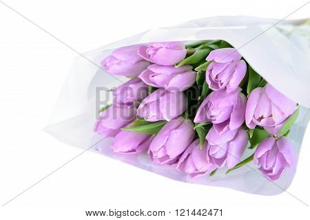Lilac tulips in wrapper paper on the white