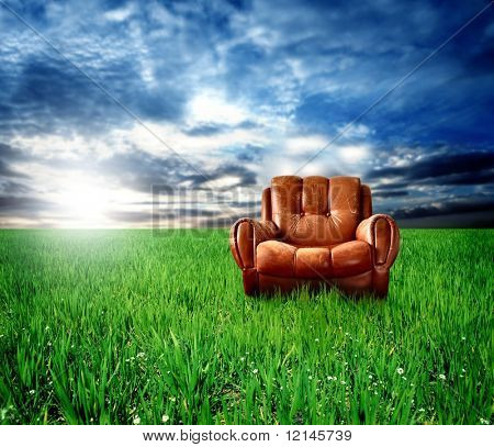 a arm-chair on the grass field