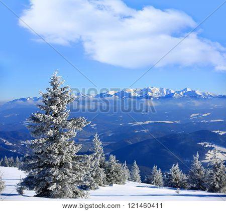 Winter scene in Slovakia, view from Kubinska Hola Ski Park