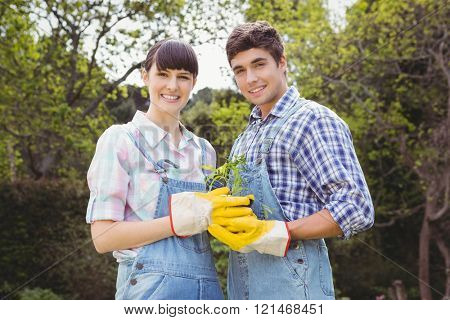 Portrait of young couple holding a sapling in garden