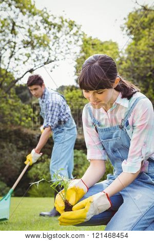 Young woman planting a sapling in garden and man cleaning grass in background