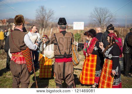 Pruning Of The Vineyards Ritual In Bulgaria
