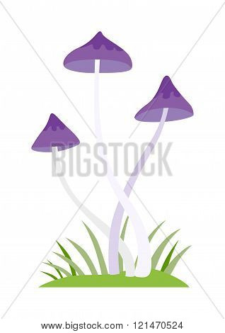 Mushrooms vector cartoon Illustration on white background
