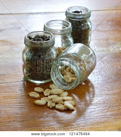 winter melon seed on table