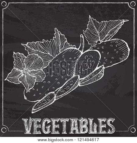 vector chalk drawing of cucumbers
