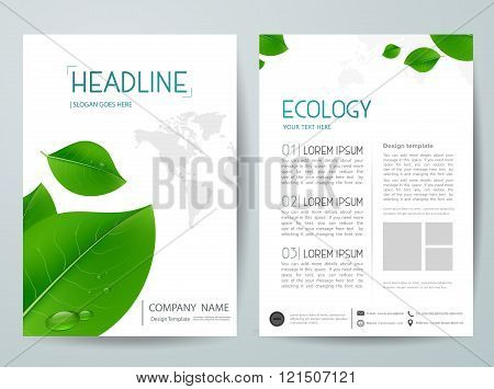 Vector magazine,modern flyers brochure,cover,annual report,design templates with leafs background