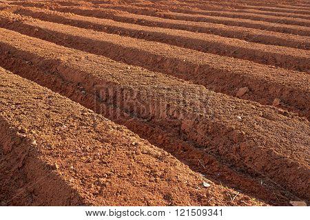 ploughed farmland
