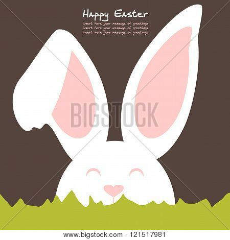 Cheerful and friendly colored rabbit - Background