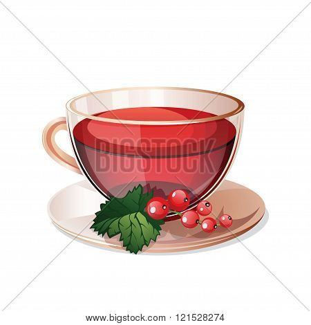 Glass Cup With Herbal Tea Isolated On A White Background.