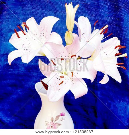 Bouquet of pink lilies on a bright blue background in Or Yehuda Israel