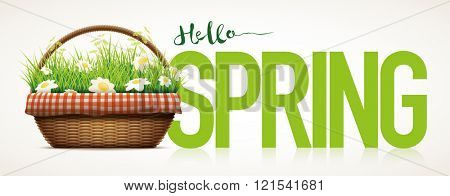 Spring themed poster template. Vector illustration of realistic wicker basket. Grass and daisy flowers in wicker basket. Elements are layered separately in vector file.