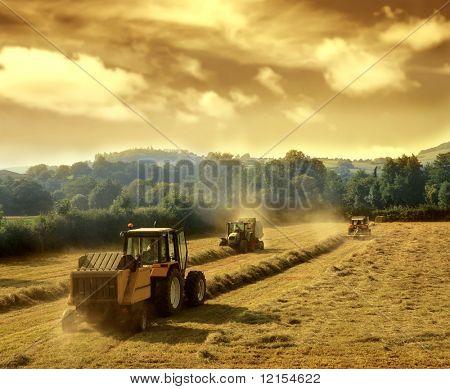 tractors on work