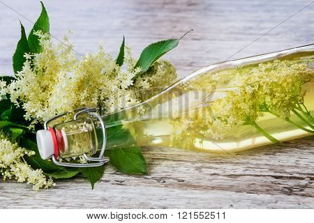 Elderflower Juice, Elderflower Champagne