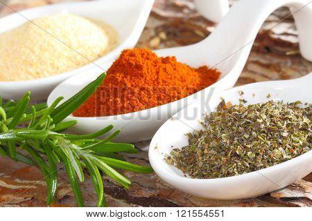 morsels spoon with Marjoram paprika garlic salt