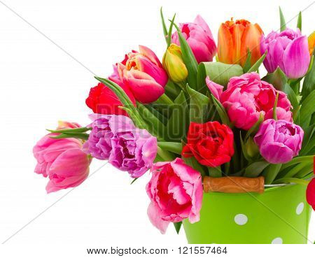 bouquet of  pink, purple and red  tulips