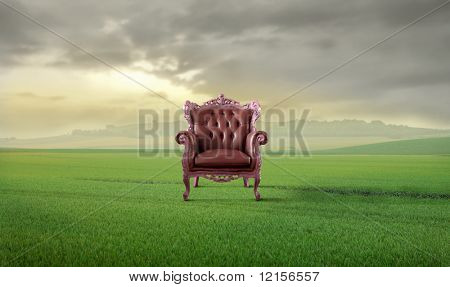 armchair in a grass field